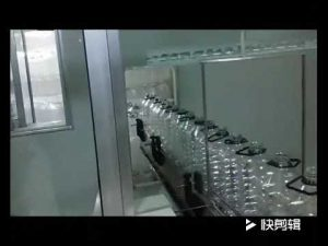 otomatik hardal yağı, zeytinyağı, yemeklik yağ dolum paketleme makinesi